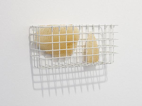 sema-bekirovic-bees01