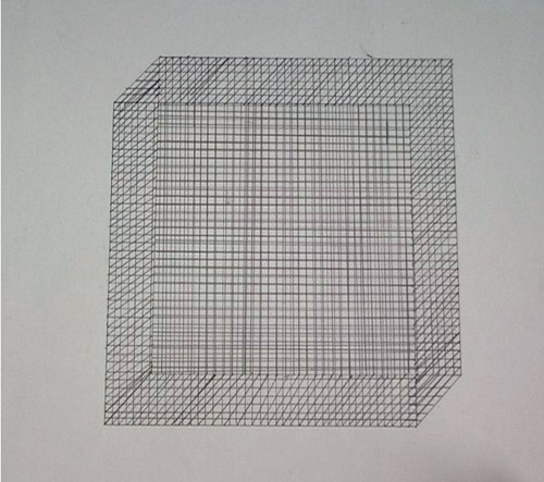 sema-bekirovic--maze1